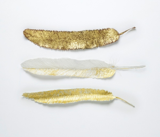 Carole-Bury.-Golden-Flight-Feathers.jpg